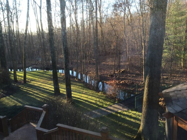 View from the deck of our new home